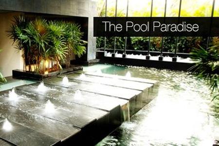 The Pool Paradise