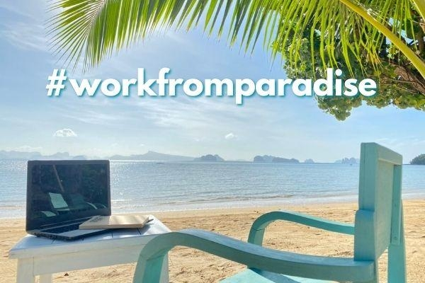 Workcation Package